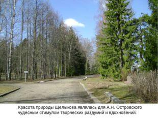 Красота природы Щелыкова являлась для А.Н. Островского чудесным стимулом тво