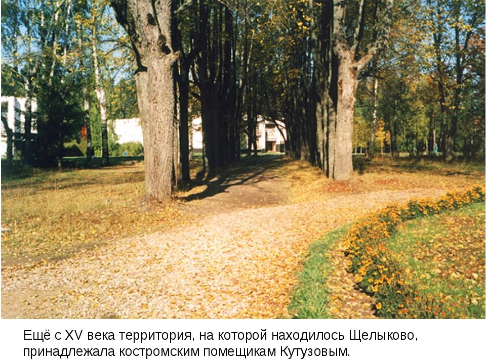 Ещё с XV века территория, на которой находилось Щелыково, принадлежала костр...