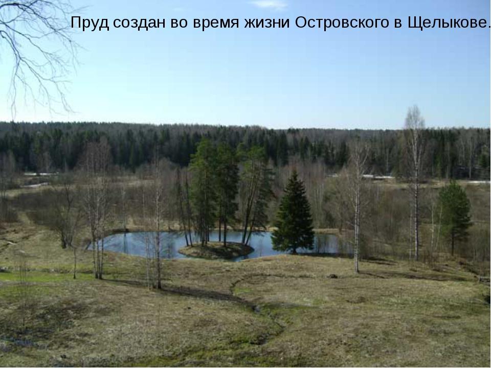 Пруд создан во время жизни Островского в Щелыкове.