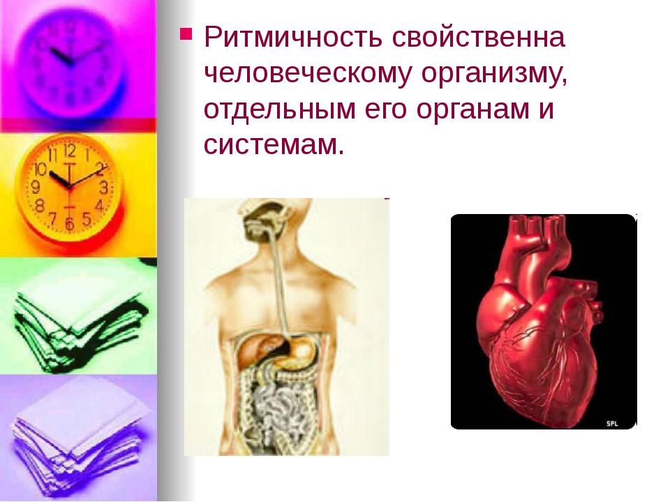 Ритмичность свойственна человеческому организму, отдельным его органам и сист...