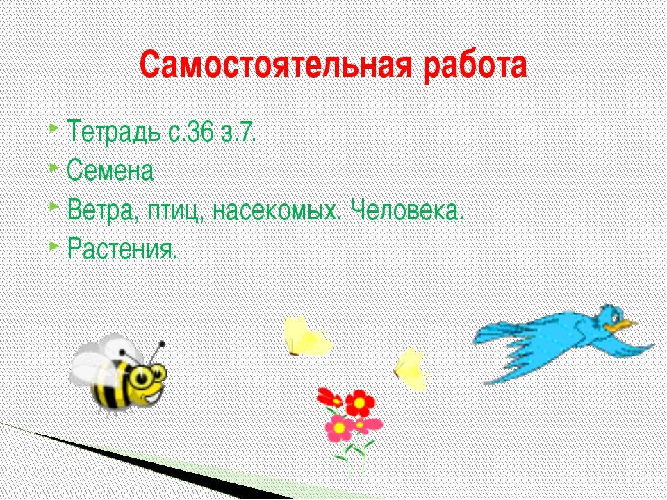 Тетрадь с.36 з.7. Семена Ветра, птиц, насекомых. Человека. Растения. Самостоя...
