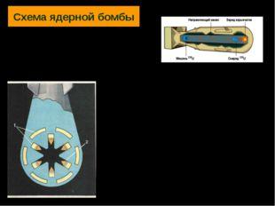 Схема ядерной бомбы 1—обычное взрывчатое вещество; 2—плутоний или уран (заряд