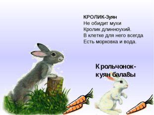 КРОЛИК-3уян Не обидит мухи Кролик длинноухий. В клетке для него всегда Есть м