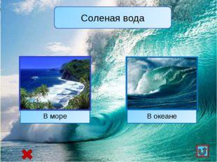 В океане В море