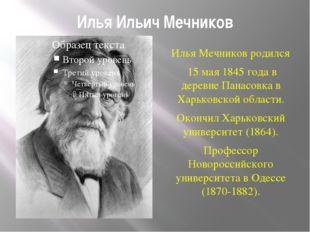 Илья Ильич Мечников Илья Мечников родился 15 мая 1845 года в деревне Панасовк