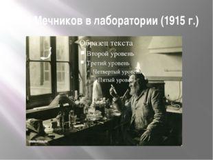 И.И.Мечников в лаборатории (1915 г.)
