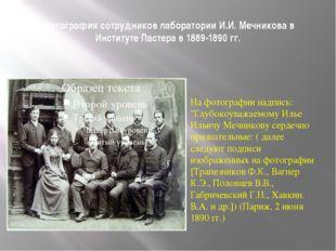 Фотография сотрудников лаборатории И.И. Мечникова в Институте Пастера в 1889-
