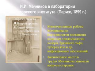 И.И. Мечников в лаборатории Пастеровского института. (Париж, 1899 г.) Многочи