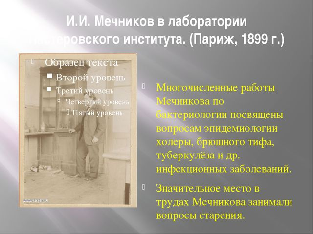 И.И. Мечников в лаборатории Пастеровского института. (Париж, 1899 г.) Многочи...