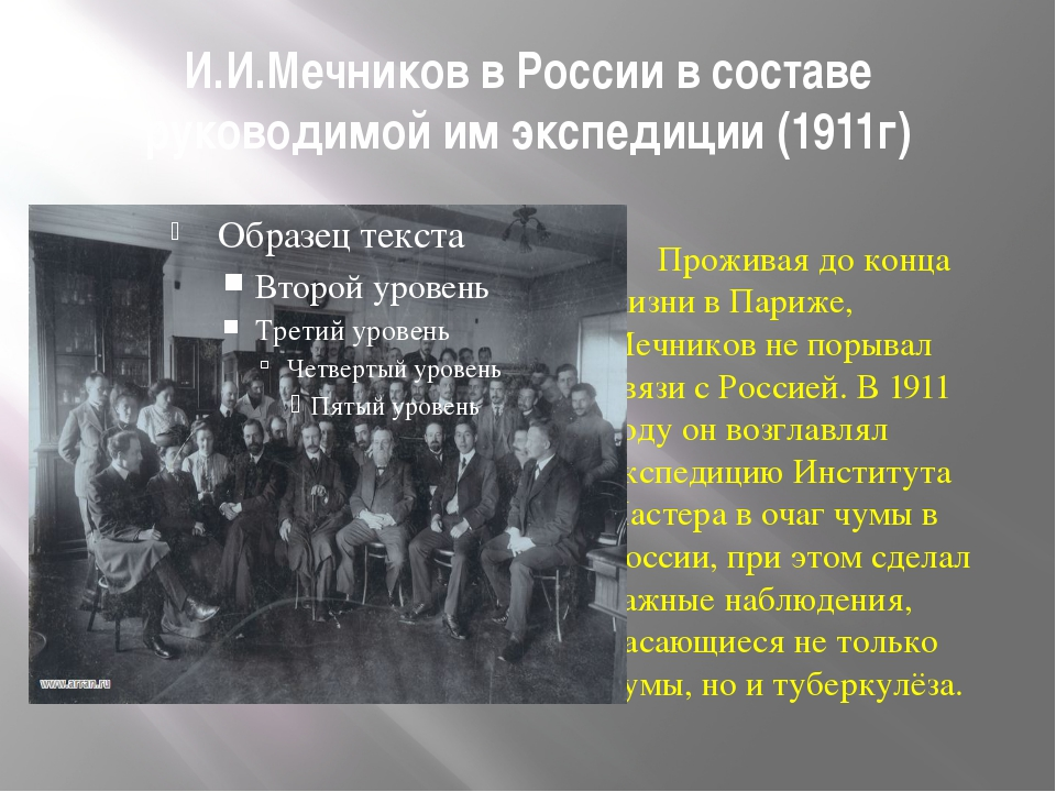И.И.Мечников в России в составе руководимой им экспедиции (1911г) Проживая до...