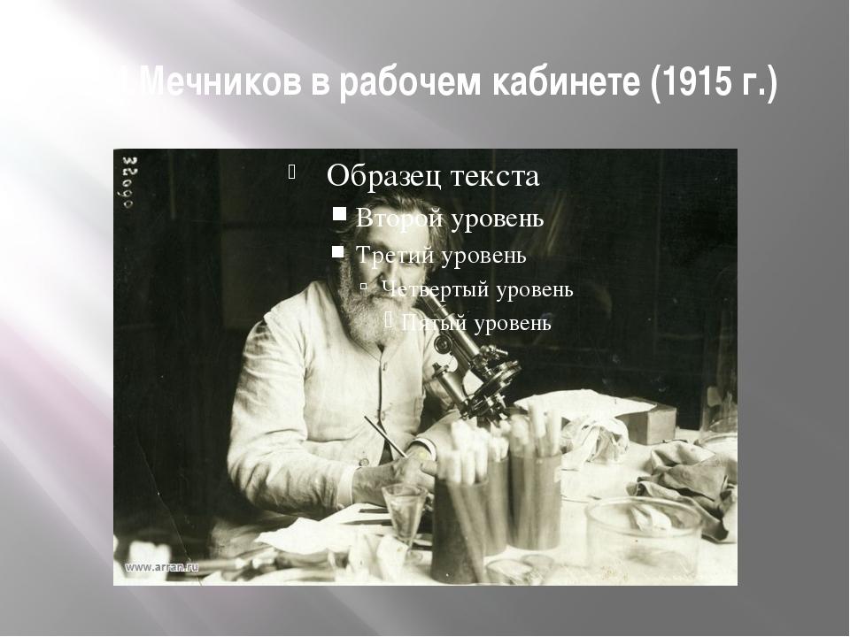И.И.Мечников в рабочем кабинете (1915 г.)