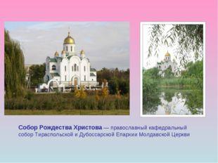 Собор Рождества Христова — православный кафедральный собор Тираспольской и Ду
