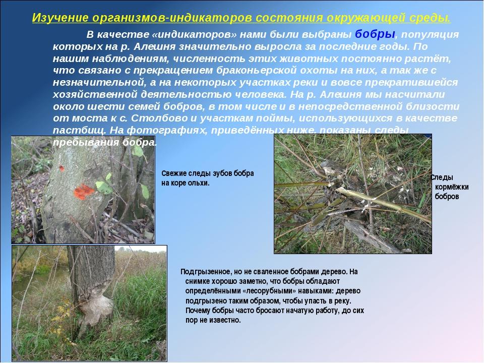 Изучение организмов-индикаторов состояния окружающей среды. В качестве «индик...