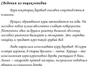 Сведения из энциклопедии Кора некоторых деревьев способна сопротивляться пла