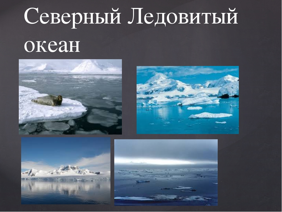 Северный Ледовитый океан {