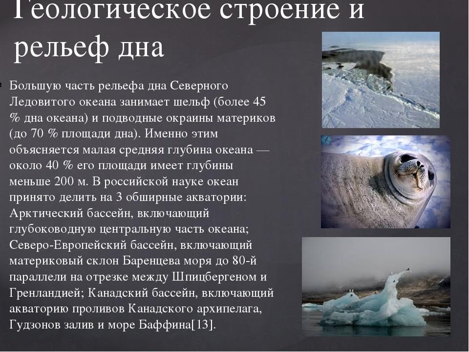 Большую часть рельефа дна Северного Ледовитого океана занимает шельф (более 4...