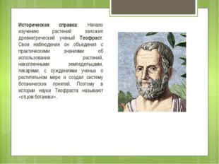 Историческая справка: Начало изучению растений заложил древнегреческий ученый