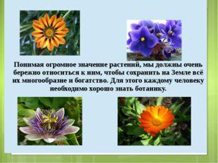 Понимая огромное значение растений, мы должны очень бережно относиться к ним,