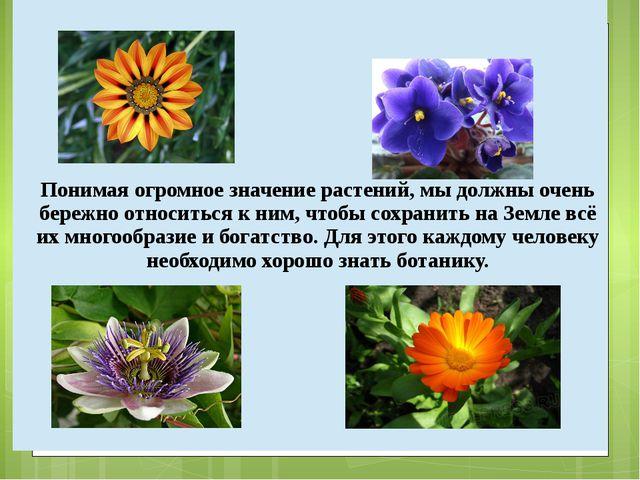 Понимая огромное значение растений, мы должны очень бережно относиться к ним,...