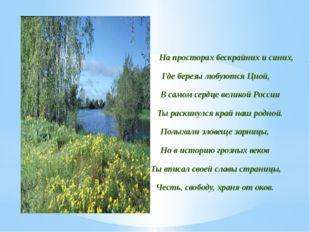 На просторах бескрайних и синих, Где березы любуются Цной, В самом сердце вел