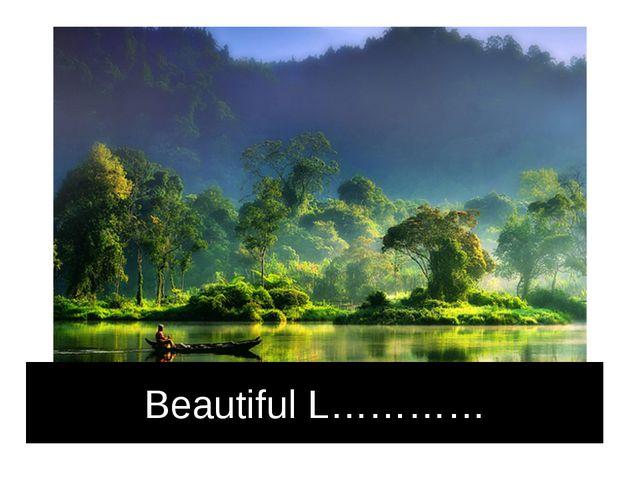 Beautiful L…………