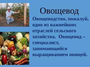 Овощеводство, пожалуй, одно из важнейших отраслей сельского хозяйства. Овощев