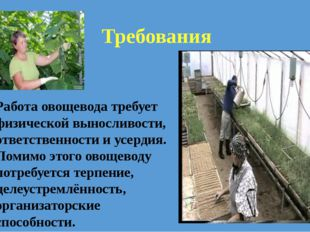 Работа овощевода требует физической выносливости, ответственности и усердия.