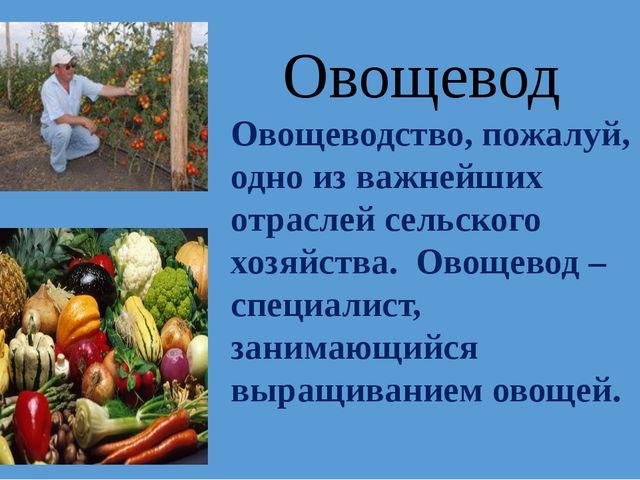 Овощеводство, пожалуй, одно из важнейших отраслей сельского хозяйства. Овощев...
