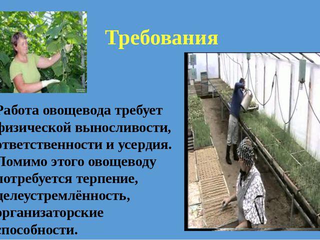 Работа овощевода требует физической выносливости, ответственности и усердия....