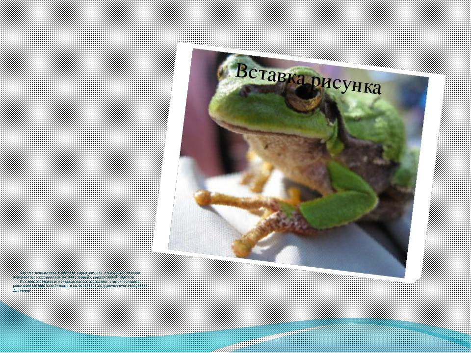 Дорогов использовал в качестве сырья лягушек, а в качестве способа переработ...