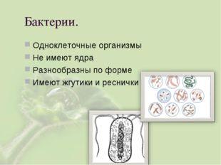Бактерии. Одноклеточные организмы Не имеют ядра Разнообразны по форме Имеют ж