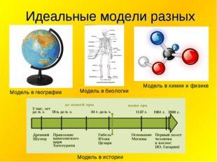Идеальные модели разных наук Модель в географии Модель в биологии Модель в х
