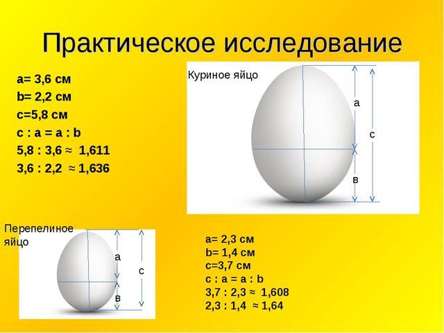 с Практическое исследование a= 3,6 см b= 2,2 см c=5,8 см с : а = а : b 5,8 :...