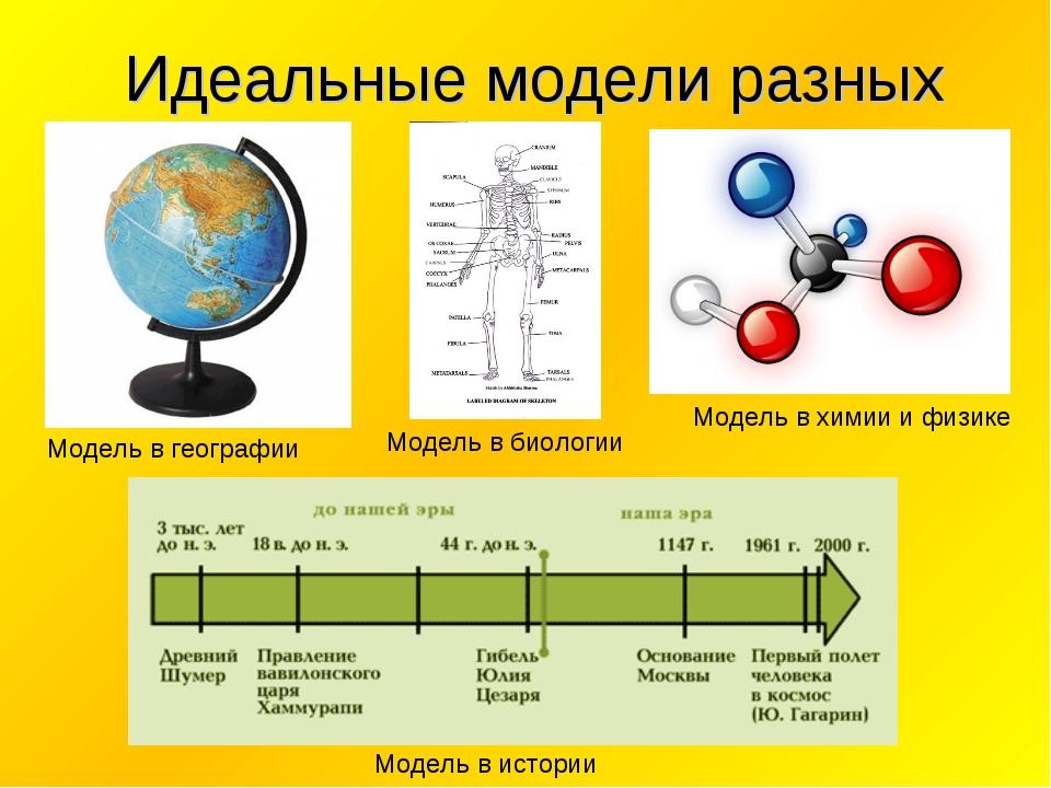 Идеальные модели разных наук Модель в географии Модель в биологии Модель в х...