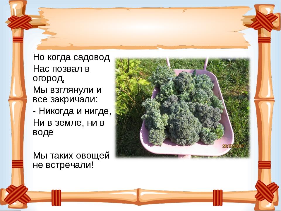 Но когда садовод Нас позвал в огород, Мы взглянули и все закричали: - Никогда...