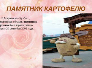 ПАМЯТНИК КАРТОФЕЛЮ В Мариинске (Кузбасс, Кемеровская область)памятник карто