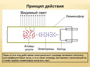 Принцип действия Пары ртути под действием электрического разряда начинают изл