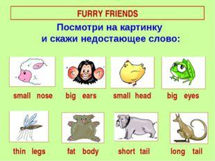 FURRY FRIENDS small big short nose fat ears eyes long thin big head legs smal