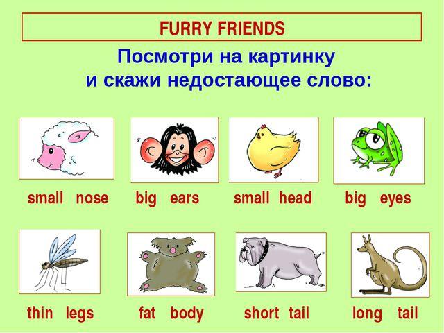 FURRY FRIENDS small big short nose fat ears eyes long thin big head legs smal...