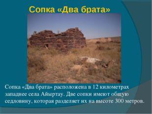Сопка «Два брата» Сопка «Два брата» расположена в 12 километрах западнее села
