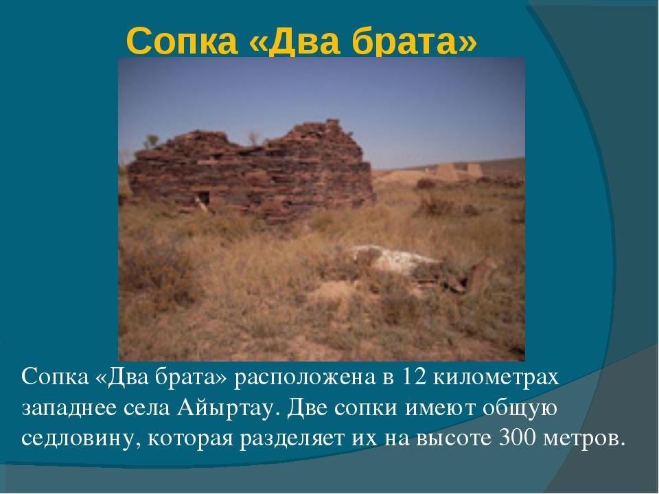 Сопка «Два брата» Сопка «Два брата» расположена в 12 километрах западнее села...