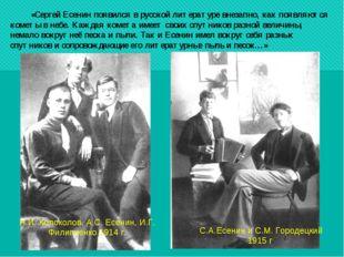 «Сергей Есенин появился в русской литературе внезапно, как появляются кометы