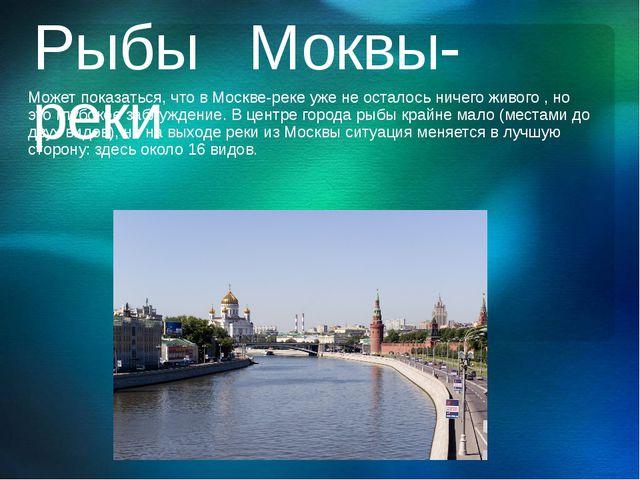 Рыбы Моквы-реки Может показаться, что в Москве-реке уже не осталось ничего жи...