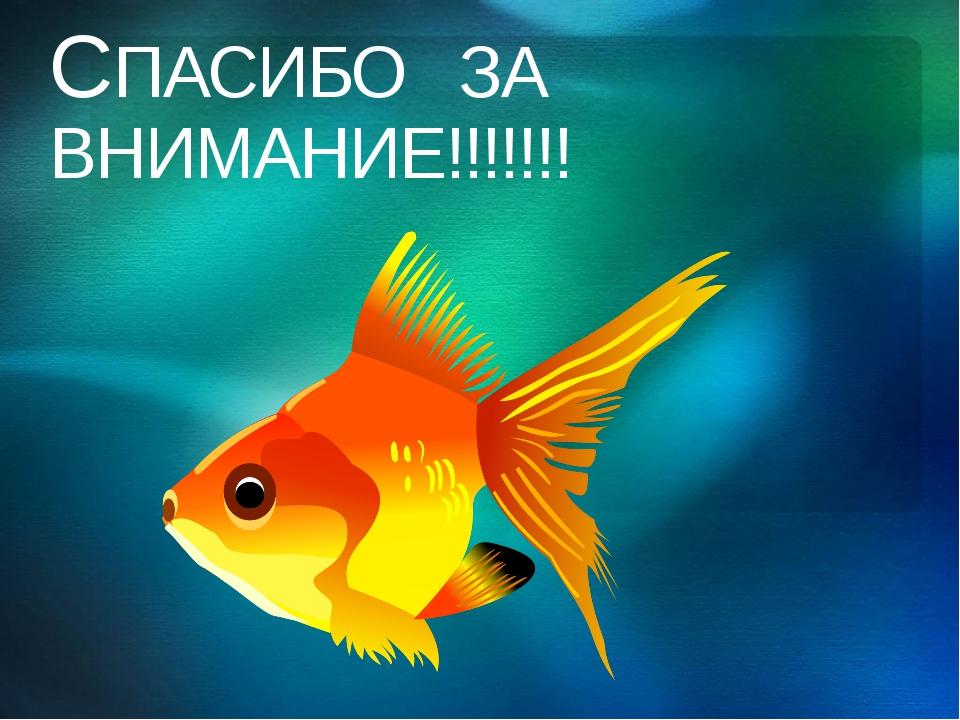 СПАСИБО ЗА ВНИМАНИЕ!!!!!!! © Корпорация Майкрософт (Microsoft Corporation), 2...