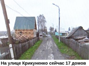 Улица героя Крикуненко На улице Крикуненко сейчас 17 домов