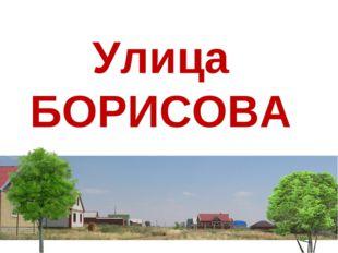 Улица БОРИСОВА