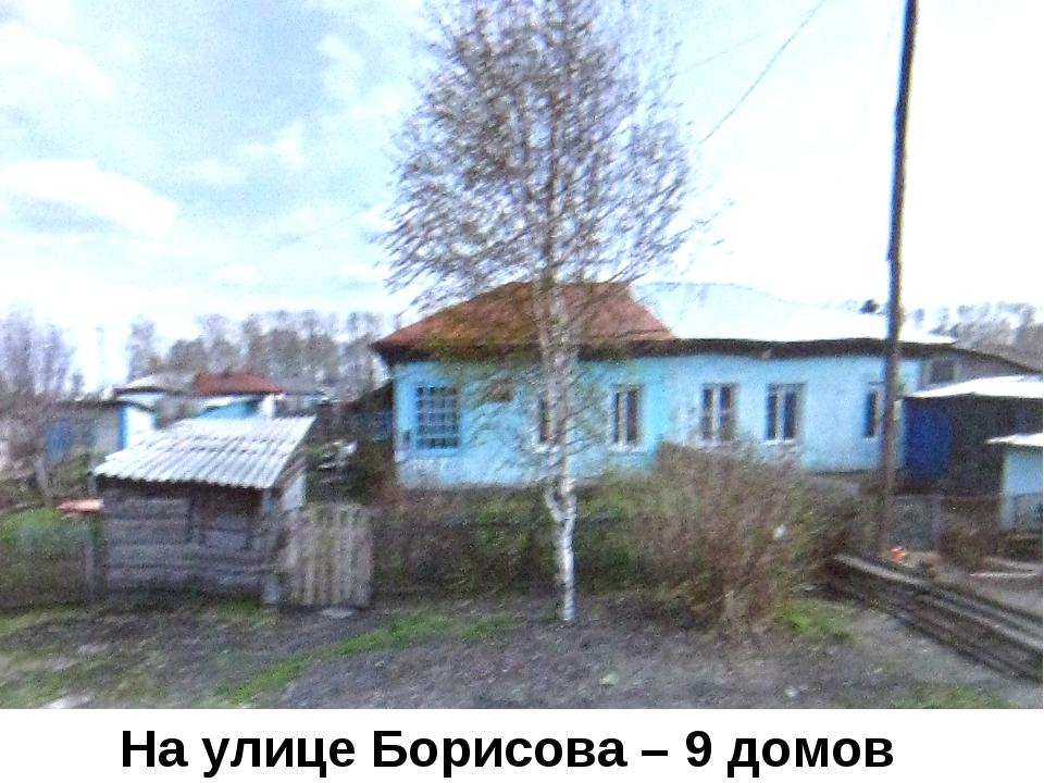 Улица Николая Борисова На улице Борисова – 9 домов.