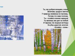 Тема природы Мороз по утру чудные узоры Рисует на заплаканном стекле. Уж в се