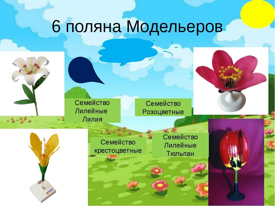 4 поляна Красная книга Если я сорву цветок, если ты сорвешь цветок, Если все:...