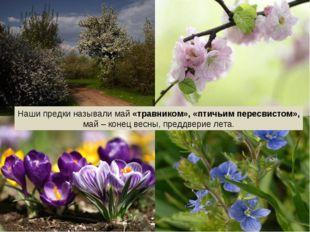 Наши предки называли май «травником», «птичьим пересвистом», май – конец весн